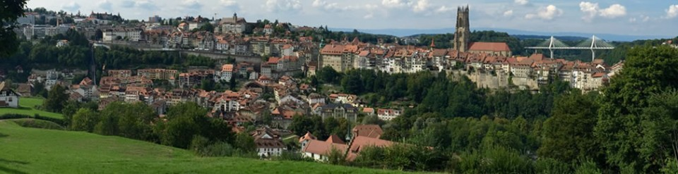 steuer-fribourg